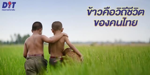 โปรโมชั่นและกิจกรรมข้าวไทยตราพันดี_Pundee rice