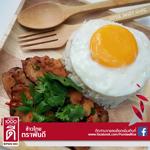 ข้าวไทยตราพันดี_Pundee rice